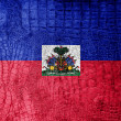 Stock Photo: Haiti Flag painted on luxury crocodile texture