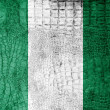 Stock Photo: NigeriFlag painted on luxury crocodile texture
