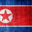 North Korea Flag painted on luxury crocodile texture — Stock Photo