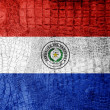 Stock Photo: Paraguay Flag painted on luxury crocodile texture
