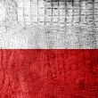 Stock Photo: Poland Flag painted on luxury crocodile texture