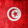 Stock Photo: TunisiFlag painted on luxury crocodile texture