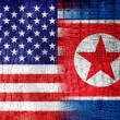 Stock Photo: USand North KoreFlag painted on luxury crocodile texture