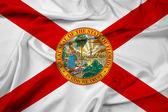 Waving Florida Flag — Stock Photo