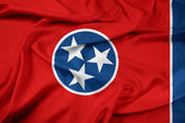 Waving Tennessee State Flag — Photo