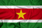 Waving Suriname Flag — Stockfoto