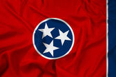 Waving Tennessee State Flag — Stock fotografie