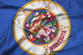Waving Minnesota State Flag — Stock Photo