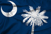 Waving South Carolina State Flag — Stock Photo
