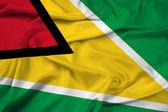 圭亚那旗帜 — 图库照片