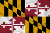 Waving Maryland State Flag — Stock Photo