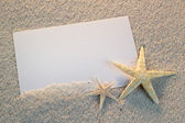 Empty white card with starfish is lying on a sea sand summer sunny background — Stock Photo
