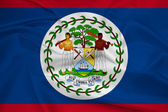 Waving Belize Flag — Stock Photo