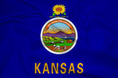 Waving Kansas State Flag — Stock Photo