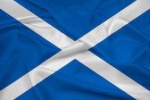 Waving Scotland Flag — Stock Photo