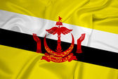 Waving Brunei Flag — Stock Photo