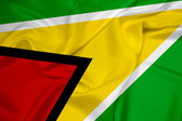 Sventolando la bandiera della guyana — Foto Stock