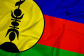 Waving New Caledonia Flag — Stock Photo