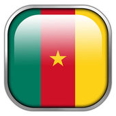 Cameroon Flag square glossy button — Stockfoto