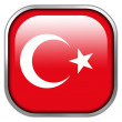 Turkey Flag square glossy button — Stock Photo #50900669