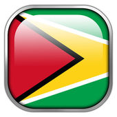 Guyana Flag square glossy button — Stockfoto