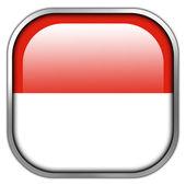 флаг монако квадратная кнопка глянцевый — Стоковое фото