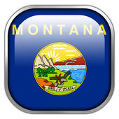 Montana State Flag square glossy button — Stockfoto