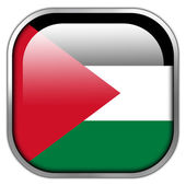 Palestine Flag square glossy button — Stock Photo