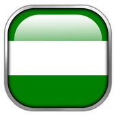 Rotterdam City Flag square glossy button — Stock Photo