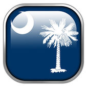 South Carolina State Flag square glossy button — Stockfoto