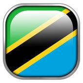 Tanzania Flag square glossy button — Stock Photo