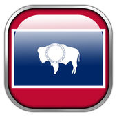 Wyoming State Flag square glossy button — Stock Photo