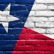 Texas State Flag painted on brick wall — Stock Photo #51665815