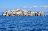 Stone cliff — Stock Photo
