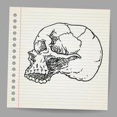 Doodle Skull — Stock Vector