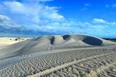 White sand dunes of Nilgen Nature Reserve — Foto Stock