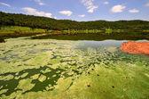 Tswaing Meteorite Crater Reserve — Stock Photo
