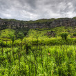 Stock Photo: Landscape of Giants Castle Game Reserve