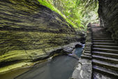 Watkins Glen State Park, New York — Stock Photo