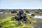 Field of Stone Cairns at Laufskalavarda, Iceland — Stock Photo