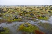 Field of Stone Cairns at Laufskalavarda, Iceland — Stock fotografie