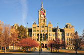 Salt Lake City and County Building — Stock Photo