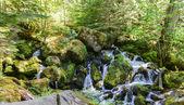 Watson Falls, Oregon — Stock Photo