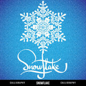 Natural Christmas snowflake — Stockvector
