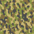 Stock Vector: Camouflage military background.