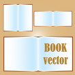 Format of open book vector icon — Stock Vector