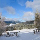 Winter landscape — Foto Stock