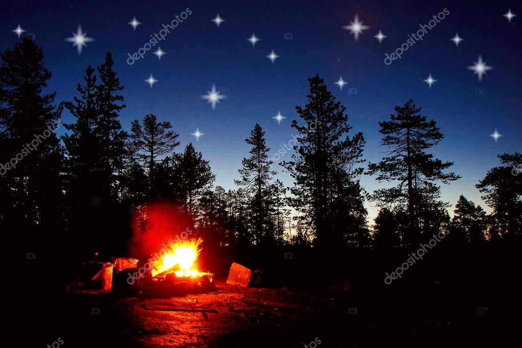 Fire burning at night in a forest with stars on sky  Stock Photo #15575149