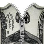 Zippered hundred dollar bill — Stock Photo #21686031