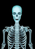 Skeleton x-ray — Stockfoto